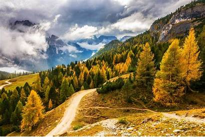 Mountain Fall Nature Forest Road Italy Landscape