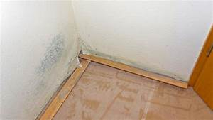 Schimmel An Der Wand Entfernen : schimmel tapete entfernen fungi mould with schimmel ~ Michelbontemps.com Haus und Dekorationen