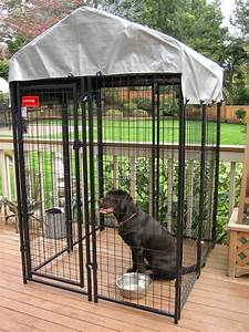 Outdoor dog kennels a buyers guide dogs recommend for Puppy dog kennels