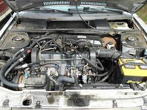 1984 Dodge Omni 4dr For Sale  Photos  Technical