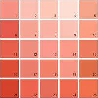 coral paint colors Jenika S Color Pattern Bedroom Behr Room And Bedrooms For Coral Paint Colors Plans 5 ...