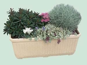 Plantes D Hiver Extérieur Balcon : balconniere d hiver pivoine etc ~ Nature-et-papiers.com Idées de Décoration