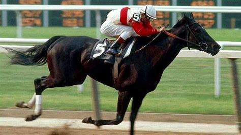 ruffian race horses horse injury racehorse greatest thoroughbred american course racing match champion meilleurs chevaux temps tous