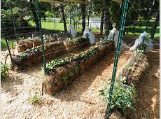 Gardening in Straw Garden Housecalls