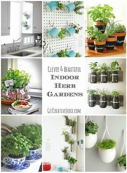 Herb Indoor Garden Kitchen Diy Creative Herbs