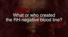 RH- Blood Type - The history of gender-specific extinctions Th?id=OIP._0N5RSP45ffee3Z33yL1LwAAAA&pid=15