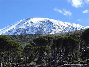 The amazing world of top10: Climbing, Mount Kilimanjaro ...