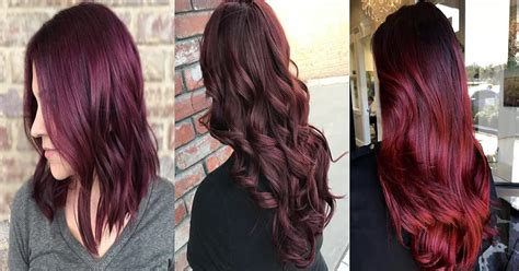 Dark Red, Maroon And Red Wine