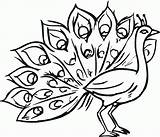 Peacock Coloring Pages Printable Drawing Easy Peacocks Bird Colouring Sheets Bestcoloringpagesforkids Most sketch template