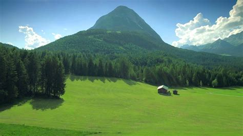 beautiful idyllic green nature countryside scenery meadow