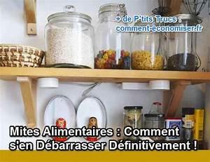 Manger Des Mites Alimentaires : mites alimentaires comment s 39 en d barrasser d finitivement ~ Mglfilm.com Idées de Décoration