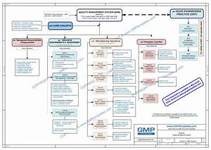 Q08 0001 Policy Evaluation Activities Gmp Templates