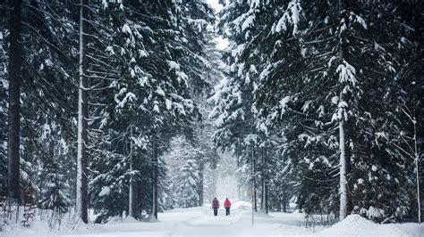 Im Winter by Winterzauber Achensee Aktiv Im Winter
