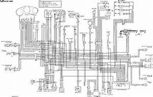 1987 Yamaha Warrior 350 Engine Diagram Wiring Schematic