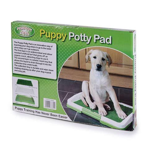 grossiste pipi pad pour chien acheter les meilleurs pipi pad pour chien lots de la chine pipi