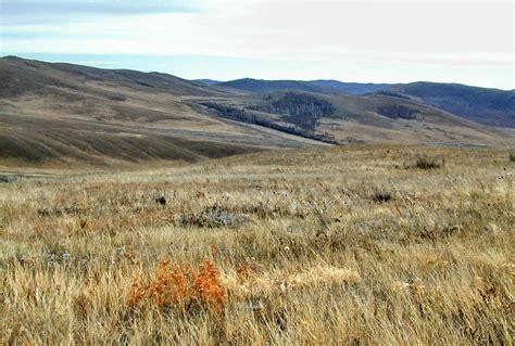 mountain steppe state reserve zakaznik reserves