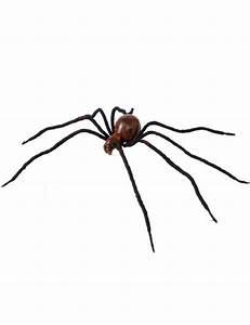 Partydeko Auf Rechnung : schwarze und braune spinne 86 cm halloween partydeko und g nstige faschingskost me vegaoo ~ Themetempest.com Abrechnung