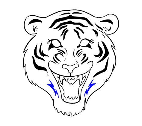 draw  tiger face    easy steps easy