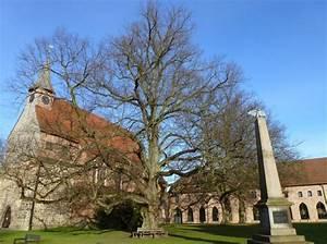 Zarrentin Am Schaalsee : rundum kirche und kloster zarrentin am schaalsee bantin ~ Watch28wear.com Haus und Dekorationen