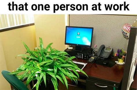 memes   works   office  understand