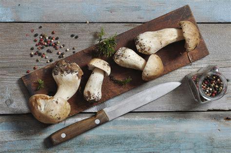 comment bien cuisiner comment choisir préparer et bien cuisiner les chignons
