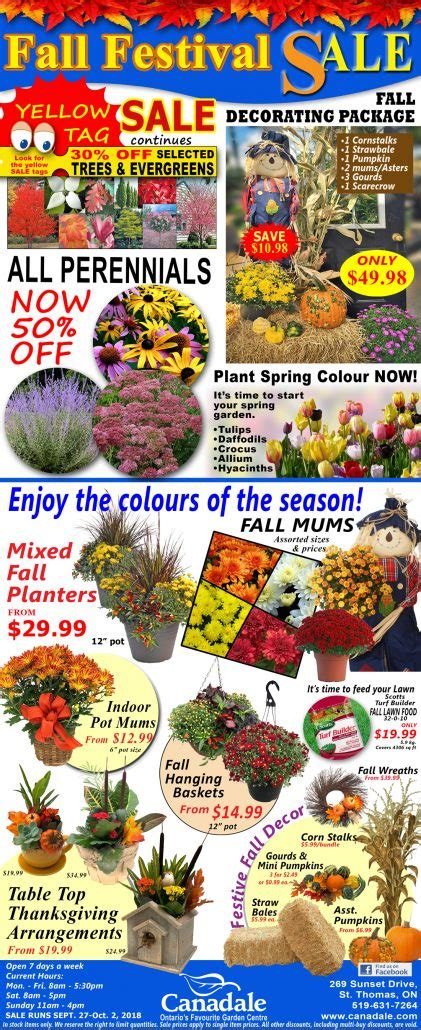 fall festival yellow sale canadale garden