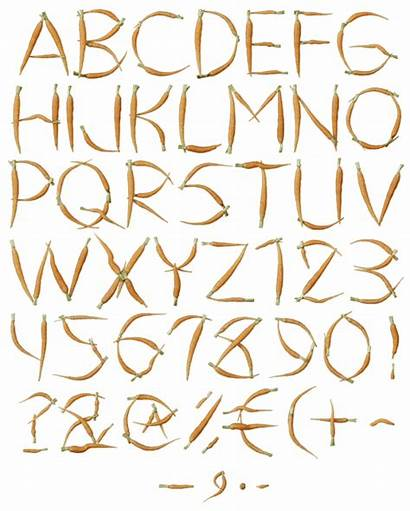 Carrot Font Simple Healthy Typeface Alphabet Fonts