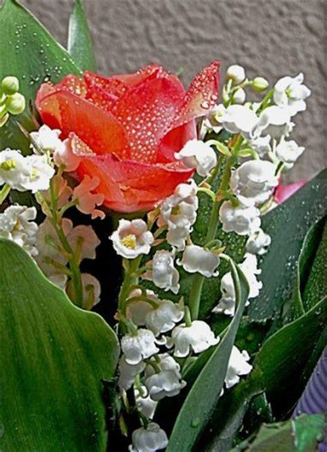 un brin de muguet porte bonheur fleuriste 224 dieppe