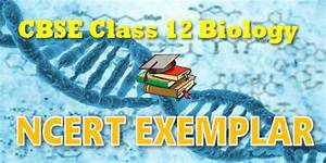 Ncert Exemplar Solutions For Class 12 Biology