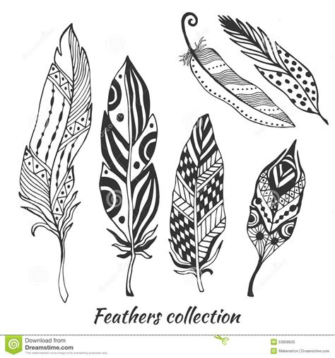 hand drawn stylized feathers vector collection set