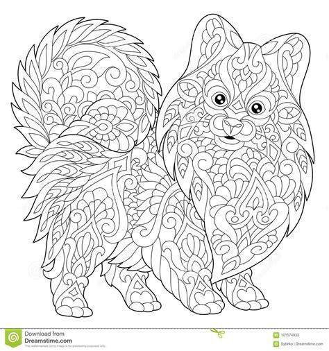 pomeranian cartoons illustrations vector stock images