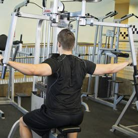 rear pec deck flye machine flyes exercise guides