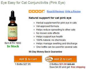 cat pink eye treatment cat conjunctivitis cats pink eye treatment orlando pet