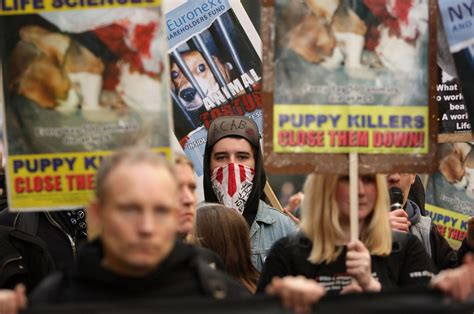 animal rights group ends  year campaign