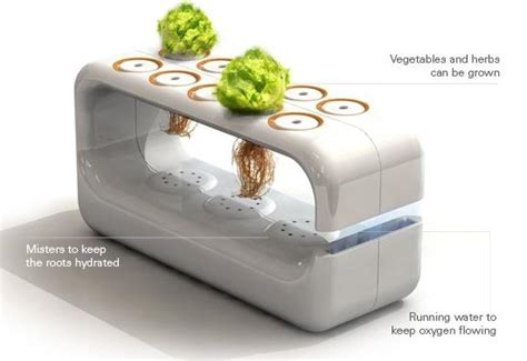 indoor hydroponic systems the idea for a home garden