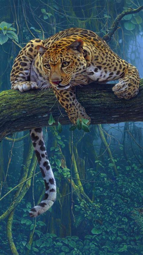 Jaguar Animal Iphone Wallpaper - картинки животных 720x1280 скачать бесплатно