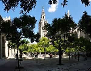 Sevilla  Patio De Los Naranjos