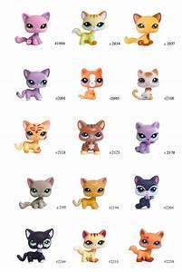 Best 25 Lps Shorthair Ideas On Pinterest Littlest Pet