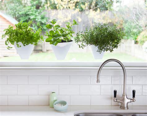 Kitchen Herb Garden Ideas - kitchen herb garden ideas kitchen connection brisbane
