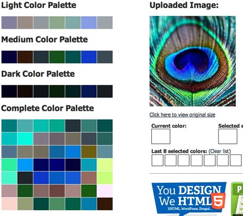 paint color scheme generator peacock feather with css color palette generator color inspiration color
