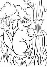 Beaver Coloring Pages Animals категории все из раскраски sketch template