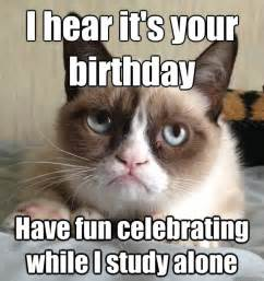 birthday cat meme i hear it s your birthday cat meme cat planet cat planet