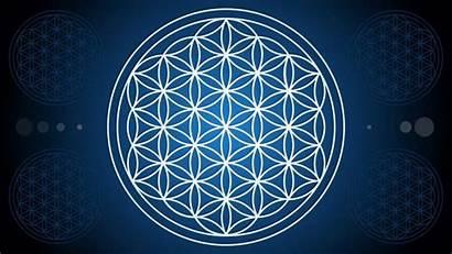 Sacred Geometry Symbols Flower Meanings Symbol