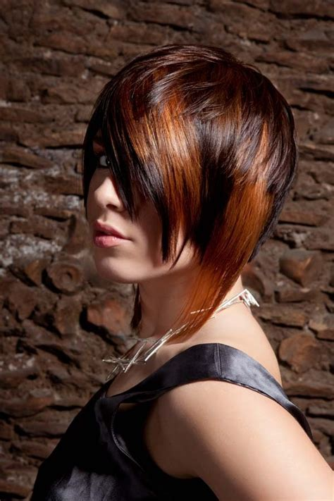 tinted hair styles two colors and brown tinted hair hairstyles hair 8010