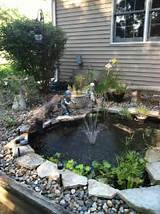 Images of Solar Heating Koi Pond