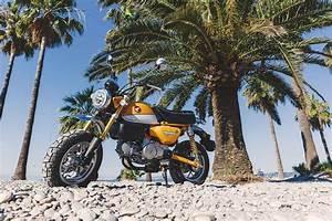 Honda Monkey 2018 : the 2018 honda monkey bike 125 quick spin scooterlab ~ Medecine-chirurgie-esthetiques.com Avis de Voitures