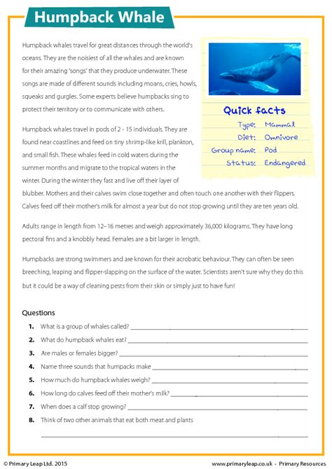 year 6 reading comprehension kidz activities