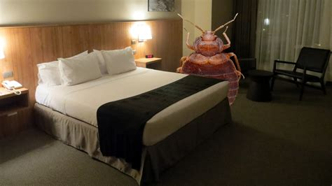 Bed Bugs Nyc by More Bed Bugs In New York City Hotels Bed Bug