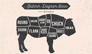 Butcher Diagram Bison Illustration