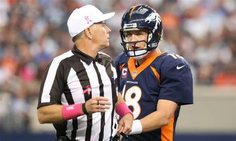 nfl playoffs terry mcaulay  ref broncos steelers game